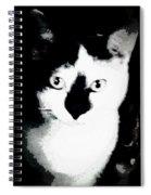 Mischief Spiral Notebook