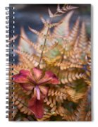Misplaced Iris Spiral Notebook