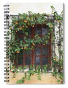 Mission Window With Yellow Flowers Spiral Notebook