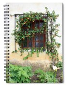 Mission Window With Yellow Flowers Vertical Spiral Notebook