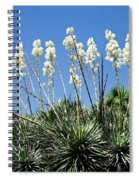 Mission Yuccas Spiral Notebook