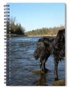 Mississippi River Dog On The Rocks Spiral Notebook