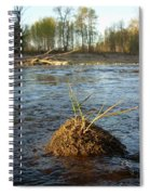 Mississippi River Grass On A Rock Spiral Notebook