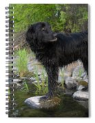 Mississippi River Posing Dog Spiral Notebook