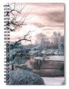 Missouri Botanical Garden Infrared Pond Blue Spiral Notebook