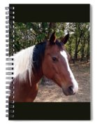 Missy 1 Spiral Notebook