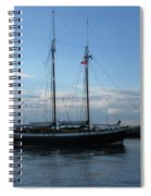 Mist Of Avalon Spiral Notebook