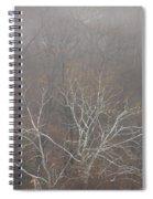 Mist Over The Hudson Spiral Notebook