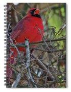 Mister Cardinal Spiral Notebook