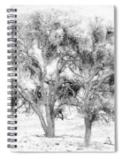 Mistletoe Tree In Black And  White Spiral Notebook