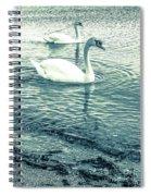 Misty Blue Swans Spiral Notebook
