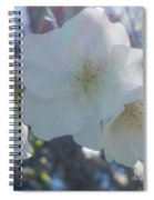 Misty Cherry Blossoms Spiral Notebook