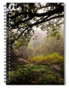 Misty Distance Spiral Notebook