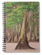 Misty Forrest Spiral Notebook