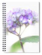 Misty Hydrangea Flower Spiral Notebook