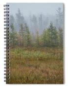 Misty Landscape Spiral Notebook