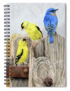Misty Morning Meadow- Goldfinches And Bluebird Spiral Notebook