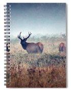 Misty Morning Spiral Notebook