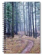 Misty Morning Trail In The Woods Spiral Notebook