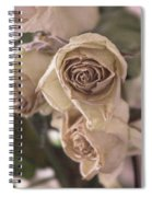 Misty Rose Tinted Dried Roses Spiral Notebook