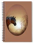 Misty Spiral Notebook