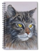Mitze Maine Coon Cat Spiral Notebook