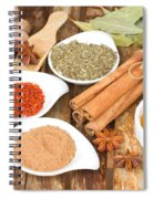 Mix  Of Spices Spiral Notebook