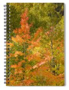 Mixed Autumn Spiral Notebook