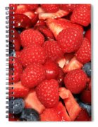 Mixed Berries Spiral Notebook