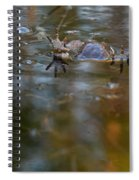 Mixed Frogs Hands Up Spiral Notebook