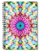 Mixed Media Mandala 9 Spiral Notebook