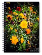 Mixture Of Flowers On Summer Day Spiral Notebook