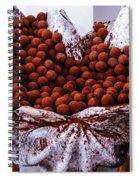Mmmm Chocolate Spiral Notebook
