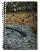 Mo Botanical Garden Bamboo Fountain Dsc00985 Spiral Notebook