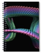 Mobius Spiral Notebook