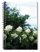 Mock Orange Blossoms Spiral Notebook