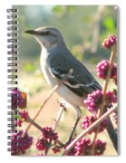 Mockingbird Heaven Spiral Notebook