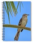 Mockingbird In A Palm Tree Spiral Notebook