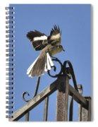 Mockingbird Landing On Fence Spiral Notebook