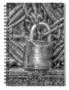 Modelo 13 Bw Spiral Notebook