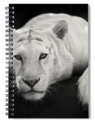 Mohan The White Tiger Spiral Notebook