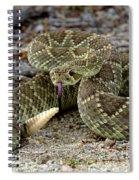 Mohave Green Rattlesnake Striking Position 3 Spiral Notebook