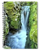 Moine Creek Goes Vertical Spiral Notebook