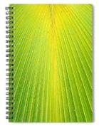 Molokai Palm Fan Spiral Notebook