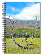 Molokai Surrealism Spiral Notebook