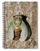Molting Cicada #2 Spiral Notebook