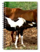 Mom And Baby Spiral Notebook