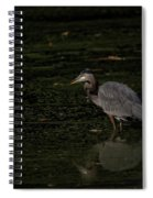 Moment Of The Heron Spiral Notebook