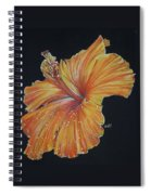 Momentous Spiral Notebook