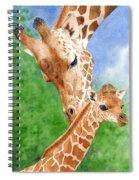 Momma Love Spiral Notebook